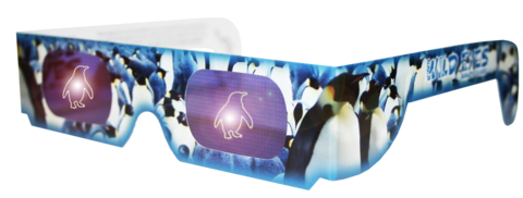 Penguin Wild Eyes Glasses