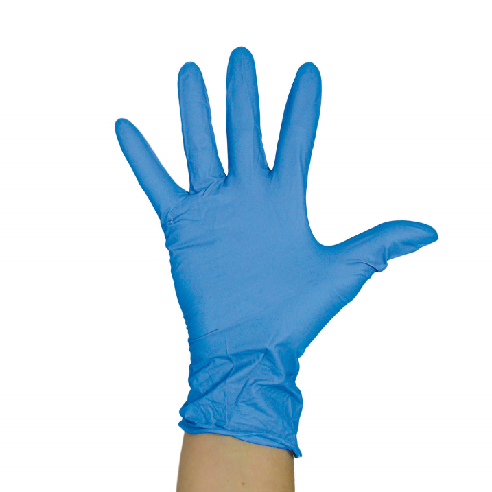 Blue Powder Free Vinyl Gloves - Large