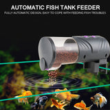 Automatic Fish Feeder Tank
