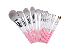 14 Piece Complete Makeup Brush Set Ombre Blush Pink