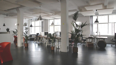 The Best and Worst Flooring Choices for Offices