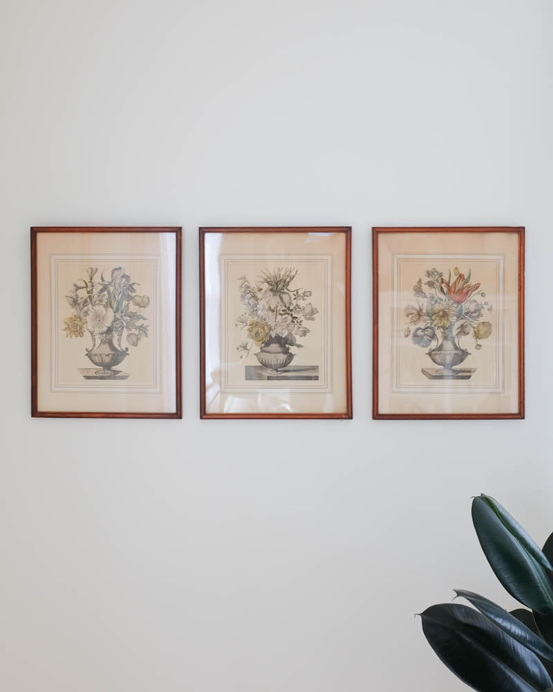Antique Framed Botanical Prints