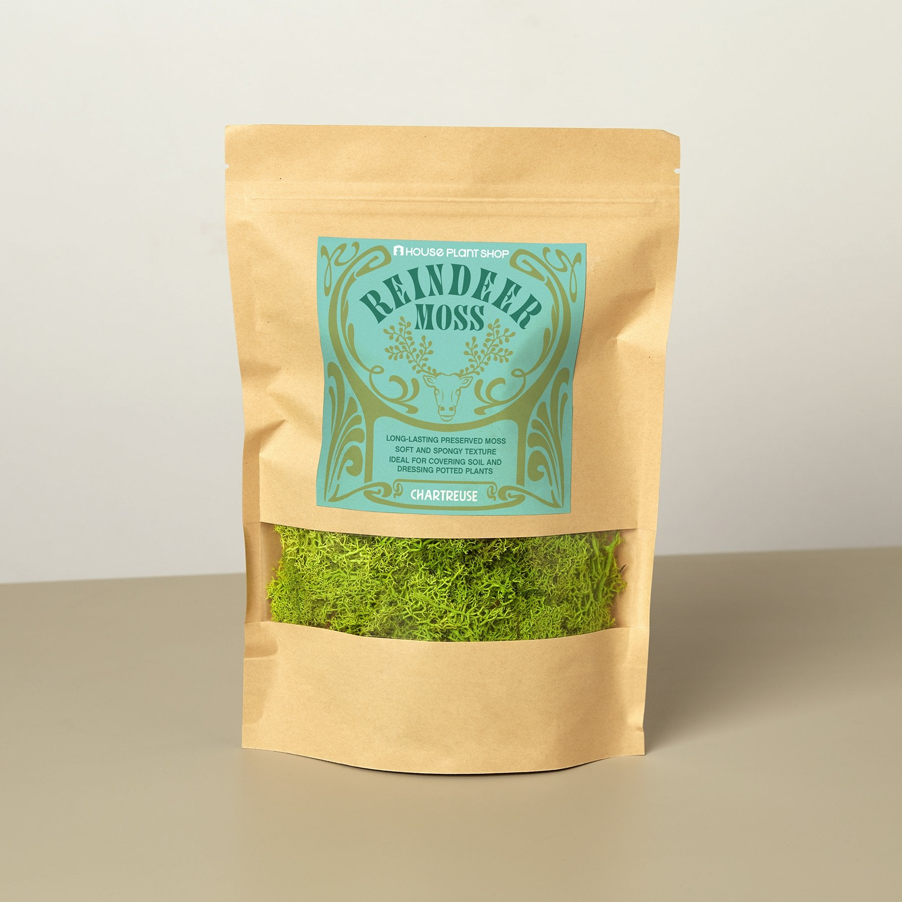Preserved Reindeer Moss - Chartreuse - 6 oz