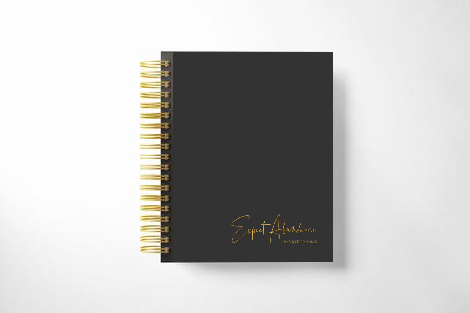 "Limited Edition ""Expect Abundance"" Success Planner"