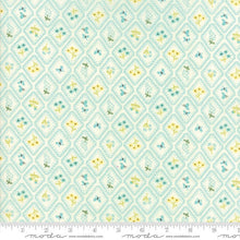 Load image into Gallery viewer, Home Sweet Home Fabric - Aqua Floral Diamonds