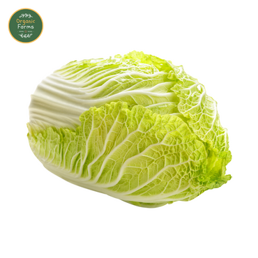 Organic Chinese Cabbage / 有機紹菜
