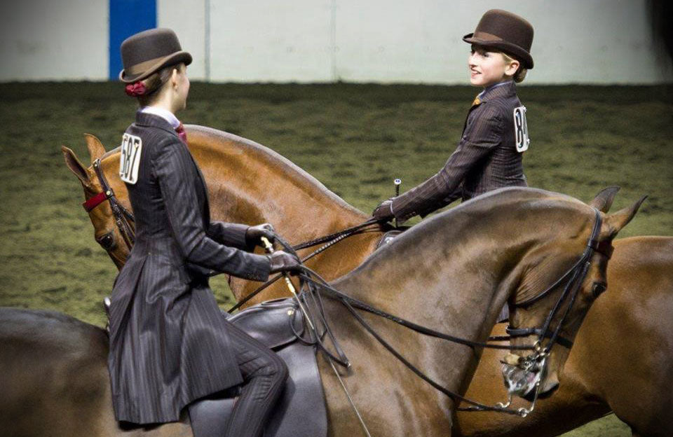 Creating a successful school program can be the foundation for a Saddlebred barn's success