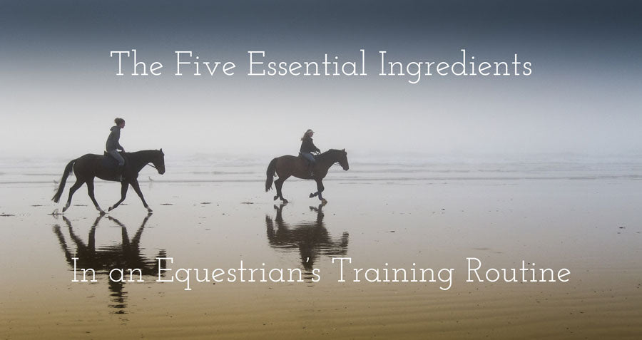 The five essential horse riding tips for beginners and intermediate riders