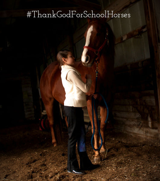 The five reasons we love school horses