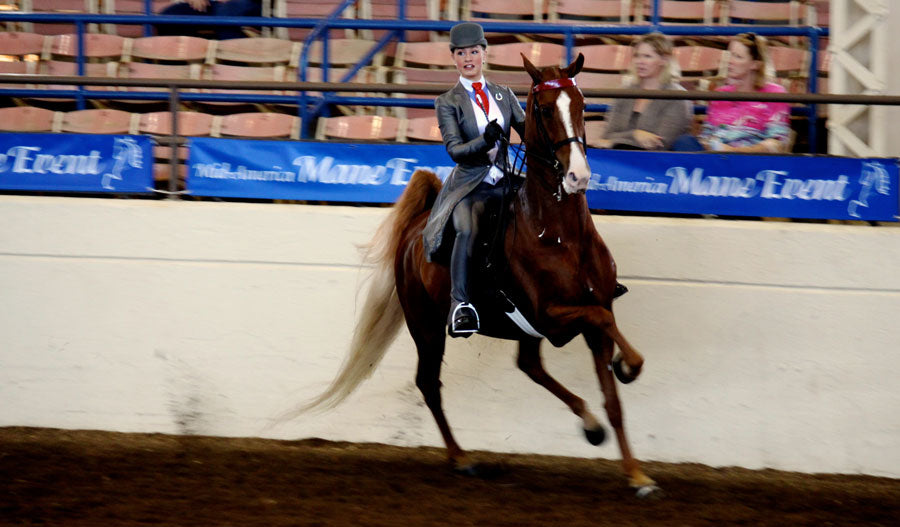 Good posture is essential for maintaining good horse show form
