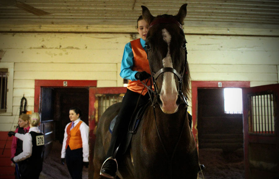 The five steps that will help you canter a horse like a pro