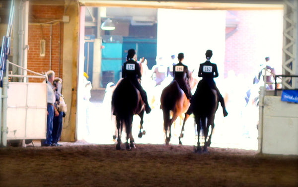 Is equitation the right horse riding discipline for you?