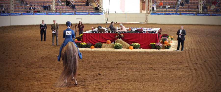 The three secrets to winning a horse show where you're the only rider
