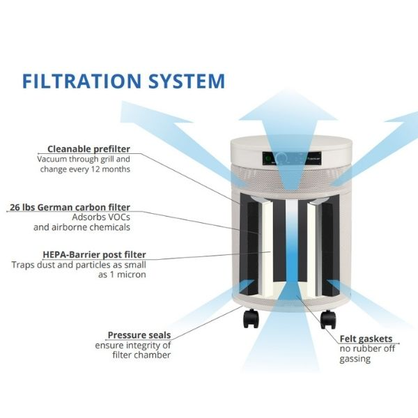 Airpura G600 DLX Odor-free for Chemically Sensitive (MCS) Air Purifier Filtration System