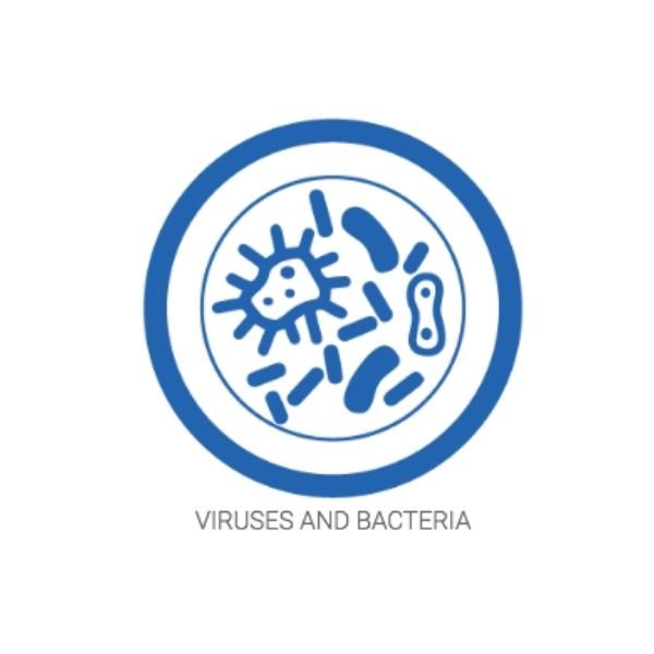 Airpura Air Purifiers Best to Get Rid of Viruses and Bacteria