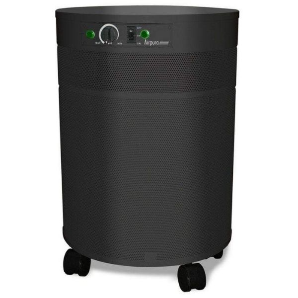 Best Air Purifiers for Mold and VOCs - Airpura P600 Germs, Mold, & Chemicals Air Purifier 