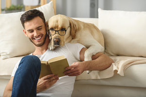 HOW TO INCREASE YOUR DOG'S IQ?