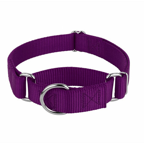 37.5mm Dog Nylon Collar