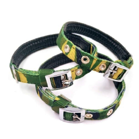20mm Nylon Dog Collar