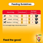 Pedigree Adult Vital Protection Lamb in Jelly 100Gm Pouch Pack of 12