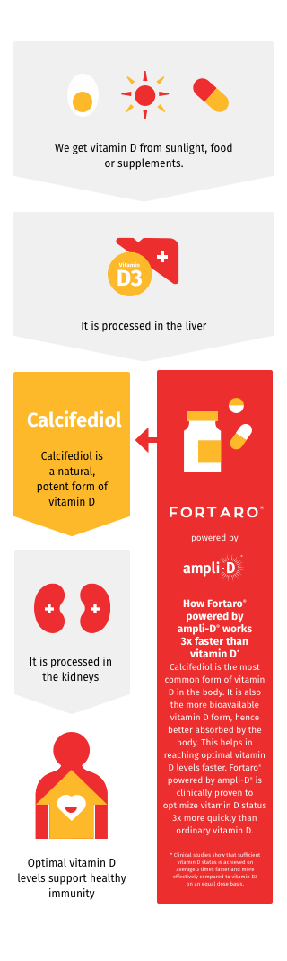 How Fortaro works
