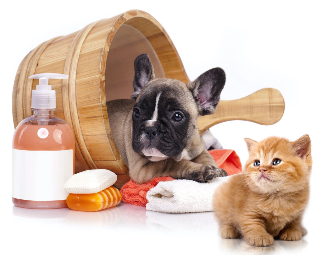 Pet Soap & Shampoo - Sold Out - More Coming Soon!