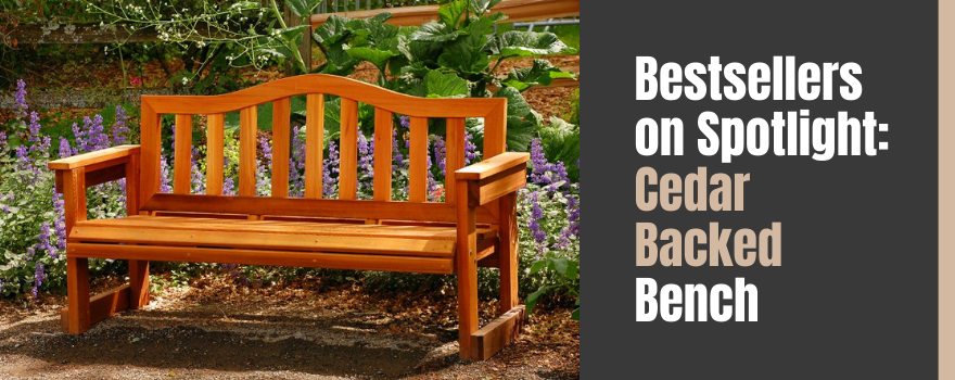 Bestsellers on Spotlight: A Hollywood Date with our Cedar Backed Bench