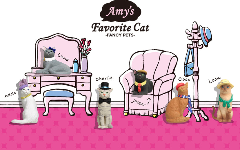 Amy's Favorite Cat