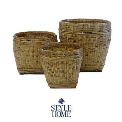 'Bago' Natural Rattan Plant Stands and Baskets