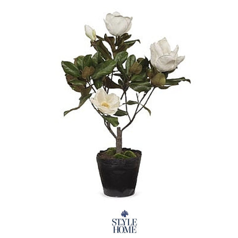 Hamptons Style Decor Faux Magnolia from Style My Home Australia