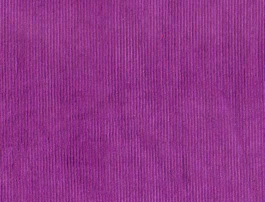 Washed Fine Cord Purple