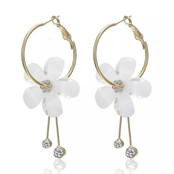 HOOPS EAR RINGS - HO017