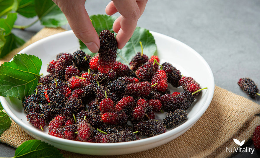Eating Mulberry Fruit