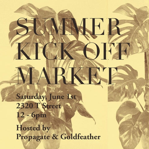 Summer Kick Off Marketplace with Cabine
