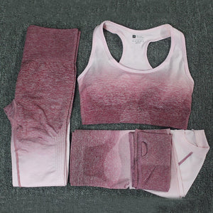 Quick Dry Fitness Sports Suit