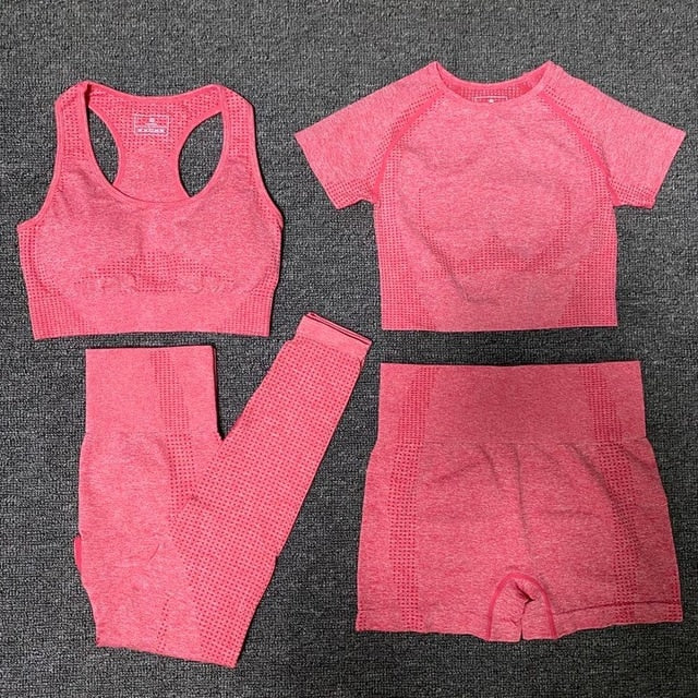 Women Gym Clothing Sports Suit