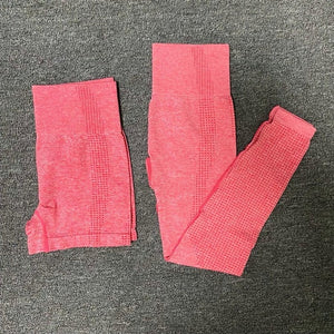 Women Seamless Sport Legging Pant