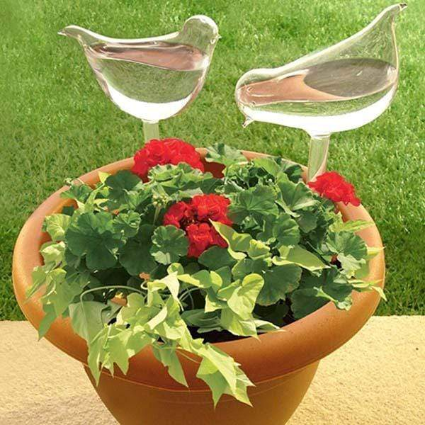 Self-Watering Plant Glass Bulbs