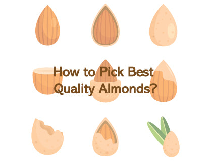How to Pick Best Quality Almonds?