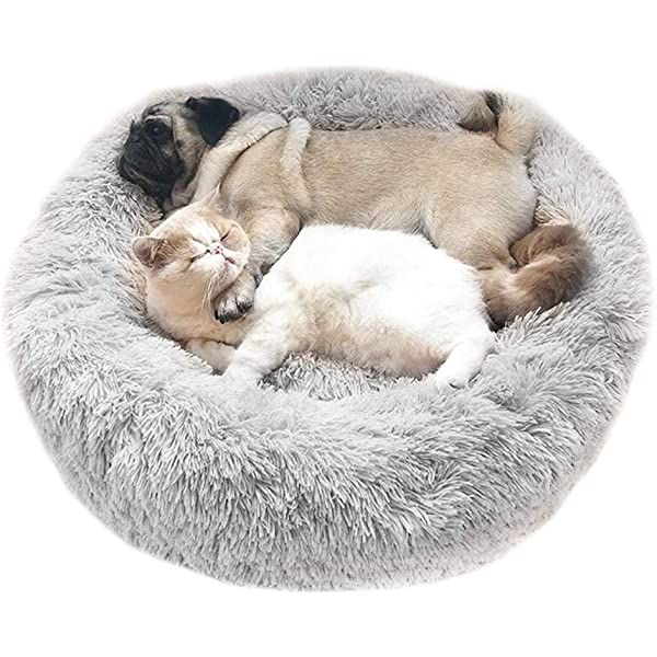 Calming Cat - Dog Bed