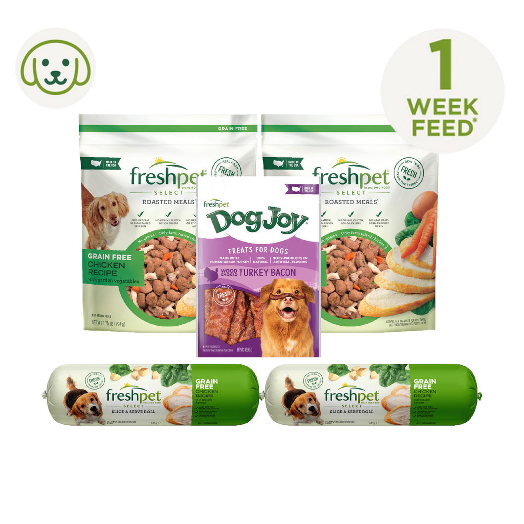 Grain Free Dog Hamper