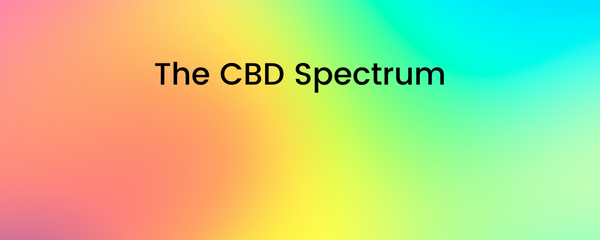 The CBD Spectrum: Which type of CBD should I try?