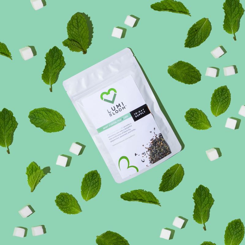 MINT FUSION TEA PLUS CBD