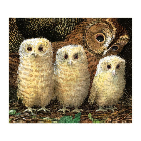 Owl Babies Greetings Card