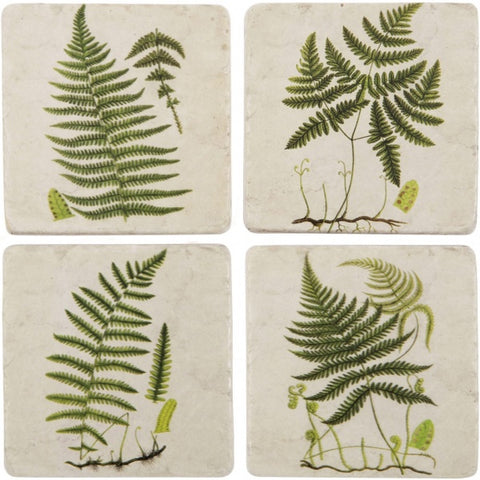Green Fern Coasters