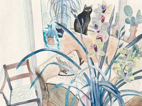 Cat and an Orchid