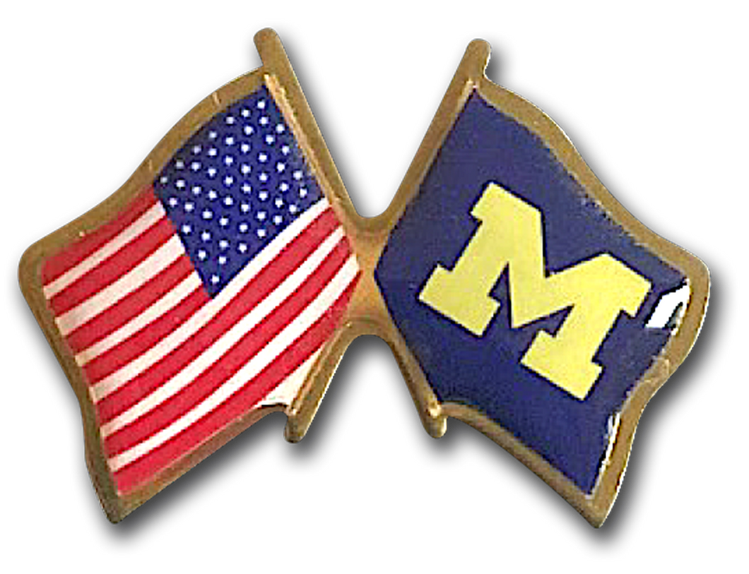 USA PRINTED CROSSED FLAG PINS <img class=
