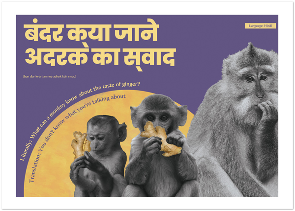 Hindi Idiom Poster - What can a monkey know about the taste of ginger