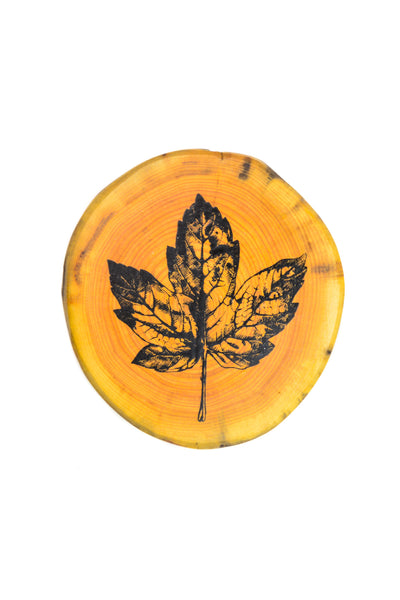 Maple Leaf Driftwood Coaster Set
