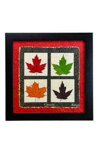 4 Seasons Maple Leaf ~ 12 x 12